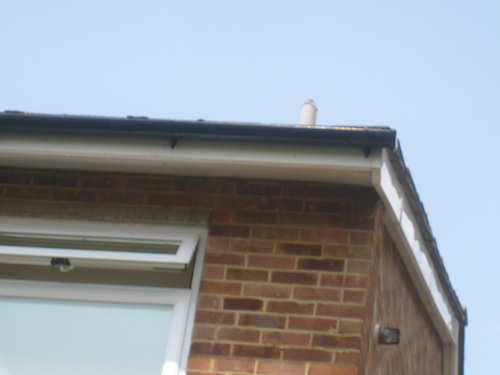 roofing repairs Croydon after