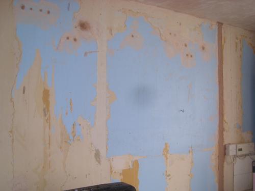 plasterer Croydon before